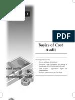 Cost Audit MFA