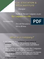 private company vs public company