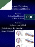 AnatomiaEvolutivayMacroscopicadelHombro
