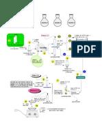 Diagrama Conceptual Marcha 1