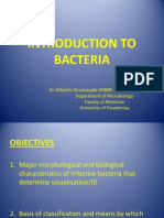 INTRODUCTION TO BACTERIA.pptx