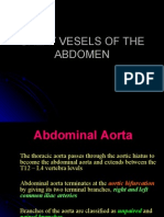 Abdominal Aorta and IVC