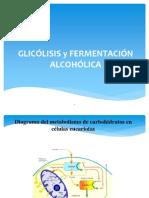Glicolisis.ppt