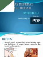 Hydrocele Referat
