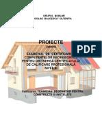 Proiecte Examen Competente Profesionale