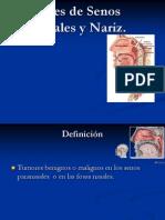 5.6 Tumores de Los SPN y Nariz.