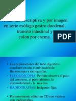 6. 3 Técnica y anatomia radiológica de  s.e.g.d., tránsito y colon por enema