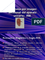 7.4 Anatomía por imagen seccional del aparato urinario RM