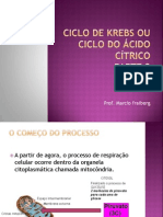 ciclodekrebsouciclodocidoctrico-110804212730-phpapp01.pptx