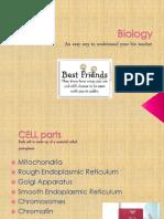 Biology Cells