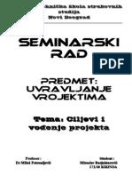 Upravljanje Projektima Seminarski Rad