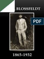 Prezentare Karl Blossfeldt