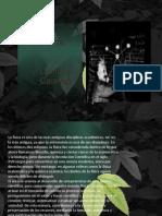 Camilo Caceres 4 Paz Sec