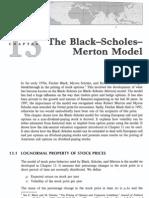 13_BSM_model
