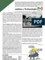 Giornale PD Piombino Trebaseleghe 2008 N.2