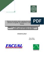 Relatório Final-Facual-Ento-2003