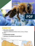 Exposé abeilles (2)
