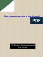 4 Factores que determinan la distribución 13 FS