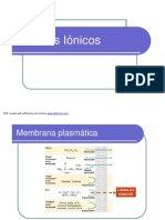 canalesionicos_damiano2007