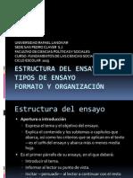 12.2 Estructura Del Ensayo - Tipos de Ensayo - Formato y Organizacion -Sesion II