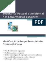 Seguran�a Pessoal e Ambiental nos Laborat�rios Escolares.pptx