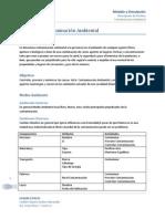 Sistema Comtaminacion Ambiental