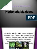 Herbolaria Mexicana.pptx