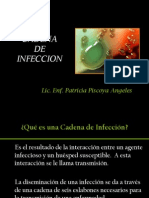 Cadena de Infeccion