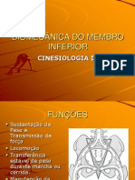 BIOMECÃ_NICA_DO_MEMBRO_INFERIOR CINESIO II