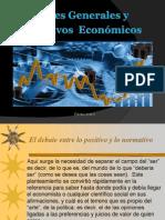 Fines Generales y Objetivos Economicos