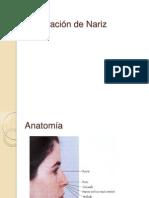 Exploración nariz y semiologia
