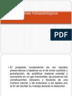 Exámenes histopatológicos