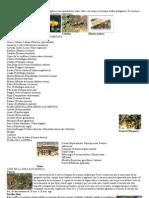 Flora y Fauna de La Patagonia