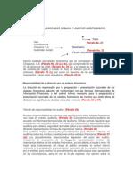 DICTAMEN DEL CONTADOR PÚBLICO Y AUDITOR INDEPENDIENTE
