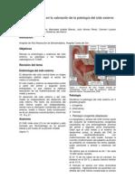 Papel de La Tcmd en La Valoracin de La Patologa Del Odo Externo 09