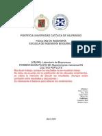 Informe Lab 1 - Grupo 1 - 13 de Abril.docx