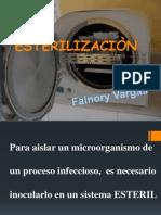 esterilizacionnnn-120308202647-phpapp01