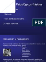 Sensacion, Aprendizaje y Memoria, Dr. Marchetti