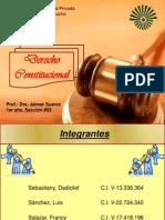 presentacion constitucional.