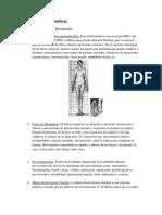 Enfermedades-Genéticas.pdf
