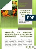 Tecnologia de Alimentos de Origem Vegetal