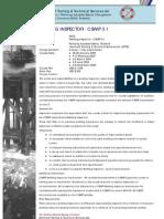 3_1WeldingInspector.pdf