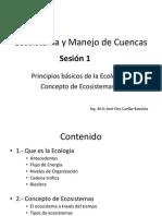 Ecosistema y Manejo de Cuencas