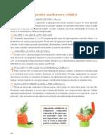 5 Reguli de Baza Pentru Ameliorarea Celulitei1