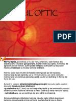 16 Nerv Ul Optic
