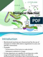 2.0 - Biological Reaction