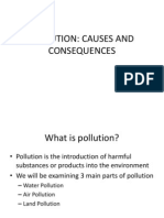 Note 2 Pollution Causes and Consequences