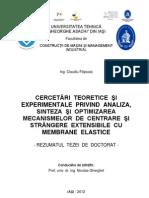 Rezumat Teza de Doctorat - Filipoaia Claudiu (1)