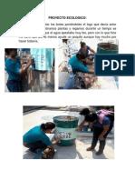 El Proyecto Ecologico Politica