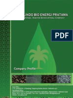 Company Profile PT PBEP